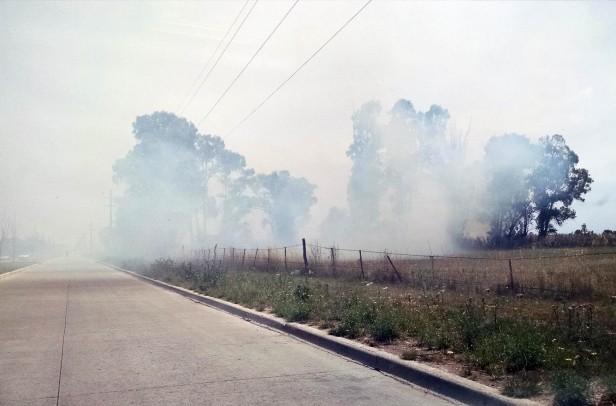 Varios incendios de pastos se produjeron este sábado