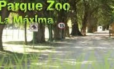 """Viví el verano en el Bioparque Municipal """"La Máxima"""""""