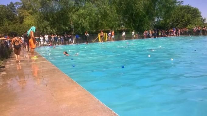Natación: Más de 500 chicos participaron de la jornada de Escuelas Abiertas