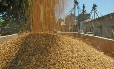 Federico Gait presentó las novedades de los cereales y cosecha fina