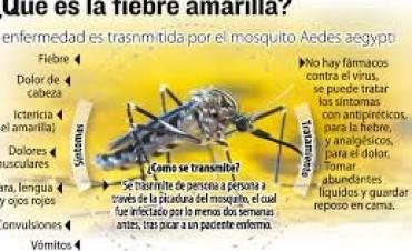 Recomendaciones a viajantes ante el virus de Fiebre Amarilla
