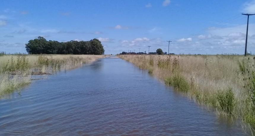 Coopelectric Informa: la situación eléctrica en el sistema rural Blanca Grande