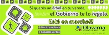 Programa de Arbolado Público: 400 registrados en la primera semana de inscripción