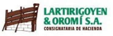 Remate de Lrtirigoyen y Oromí SA en Recalde
