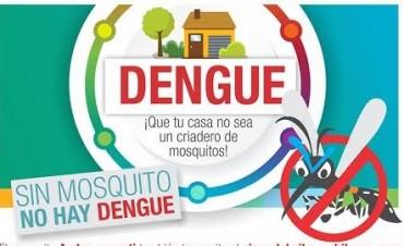 Campaña de prevención del Dengue: se hallaron larvas del mosquito transmisor de la enfermedad