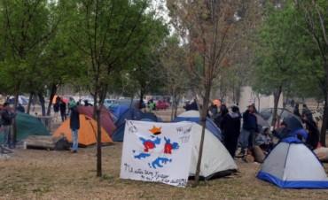 Indio en Olavarría: pueden anotarse para ofrecer alojamiento