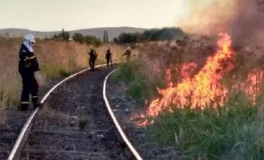Incendio en Sierra de la Ventana:  'el diámetro es extenso y las llamas son altas'