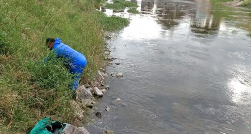 Salud pública: trabajos de desratización en el arroyo Tapalqué