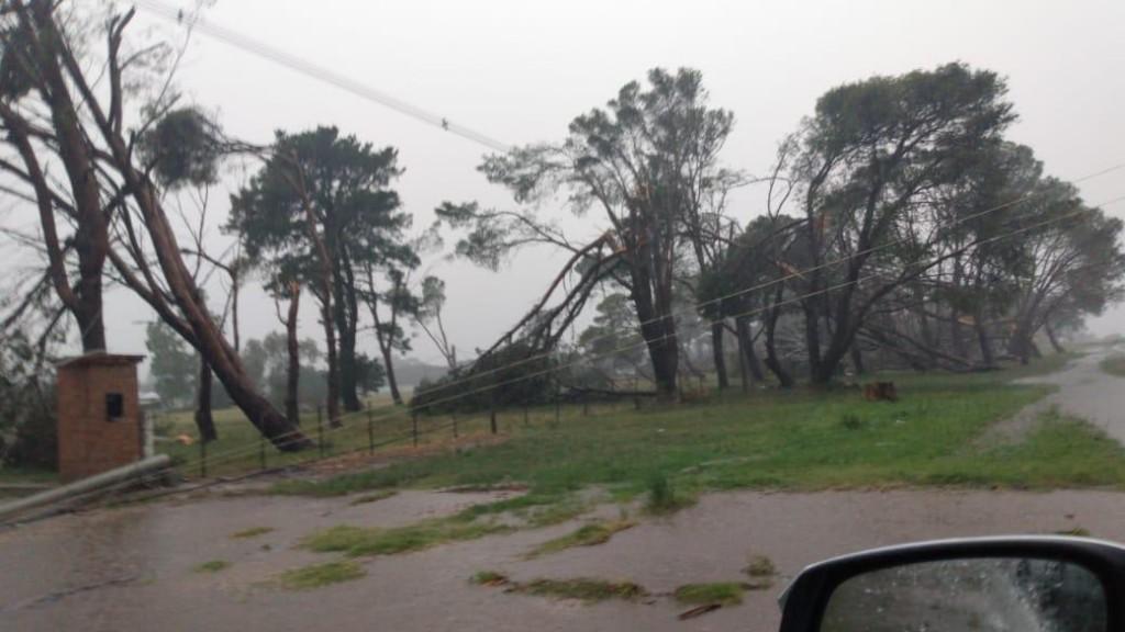Lluvia dispar en la región: hubo complicaciones en algunos distritos