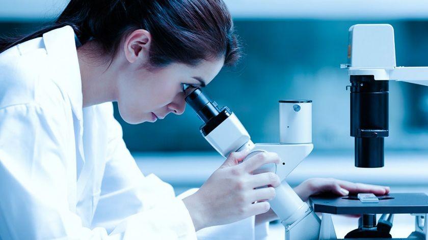 El mundo celebra este 11 de febrero el Día de la Niña y la Mujer en la Ciencia