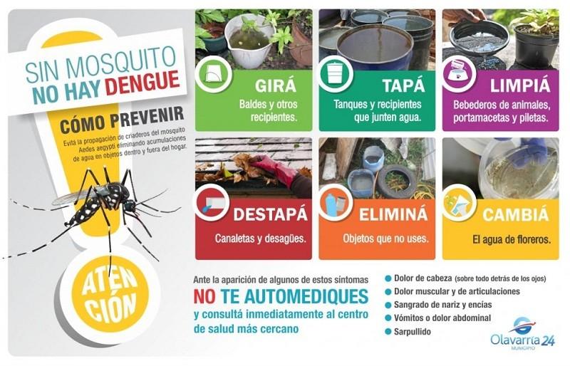 """""""Sin mosquito no hay Dengue"""""""