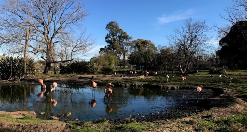 Bioparque La Máxima: programa de vinculación interinstitucional