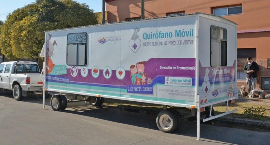 Esta semana vuelve a Villa Aurora el quirófano veterinario móvil