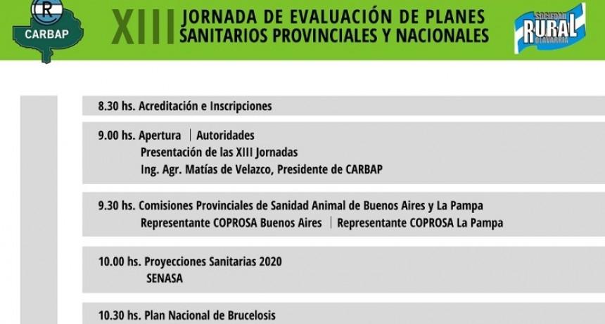 Sebastián Matrella presentó la 8º Jornada de Evaluación de Planes Sanitarios Provinciales y Nacionales