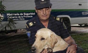 Tandil: con la ayuda de un perro rescataron a un niño