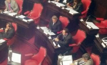El senador Vitale homenajeó al Papa a un año de su asunción