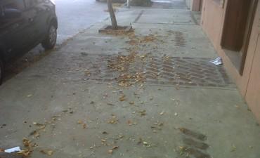 El otoño se anticipó al almanaque