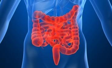 Desde Salud brindan consejos para hombres y mujeres en la prevención del cáncer de colon