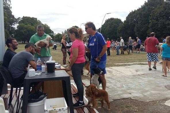 Rabia: vacunaron unas 1800 mascotas el sábado