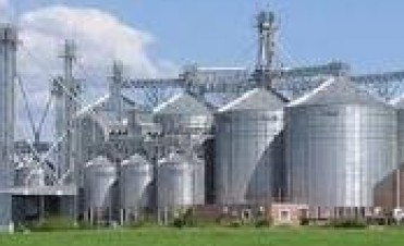 En Sintonía Agropecuaria el análisis de los cereales pasó con Federico Geist