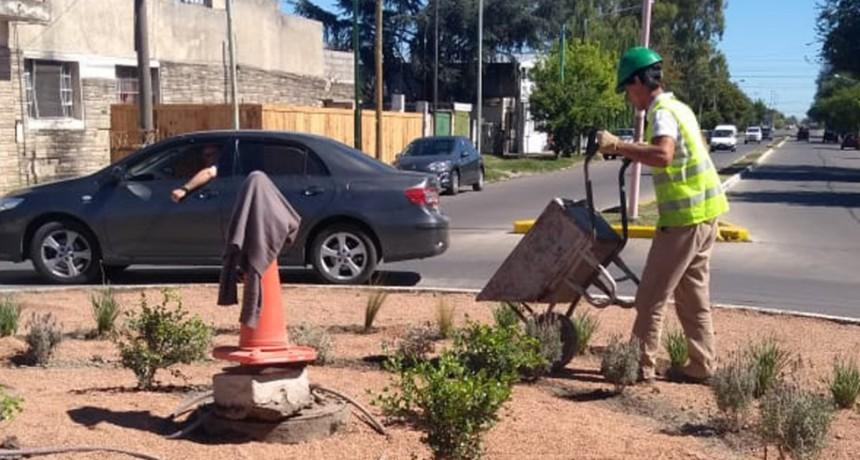 Demarcación y embellecimiento en rotonda de Rivadavia y Trabajadores