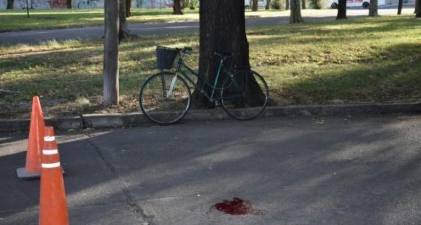 Falleció el hombre atropellado por un conductor que se fugó