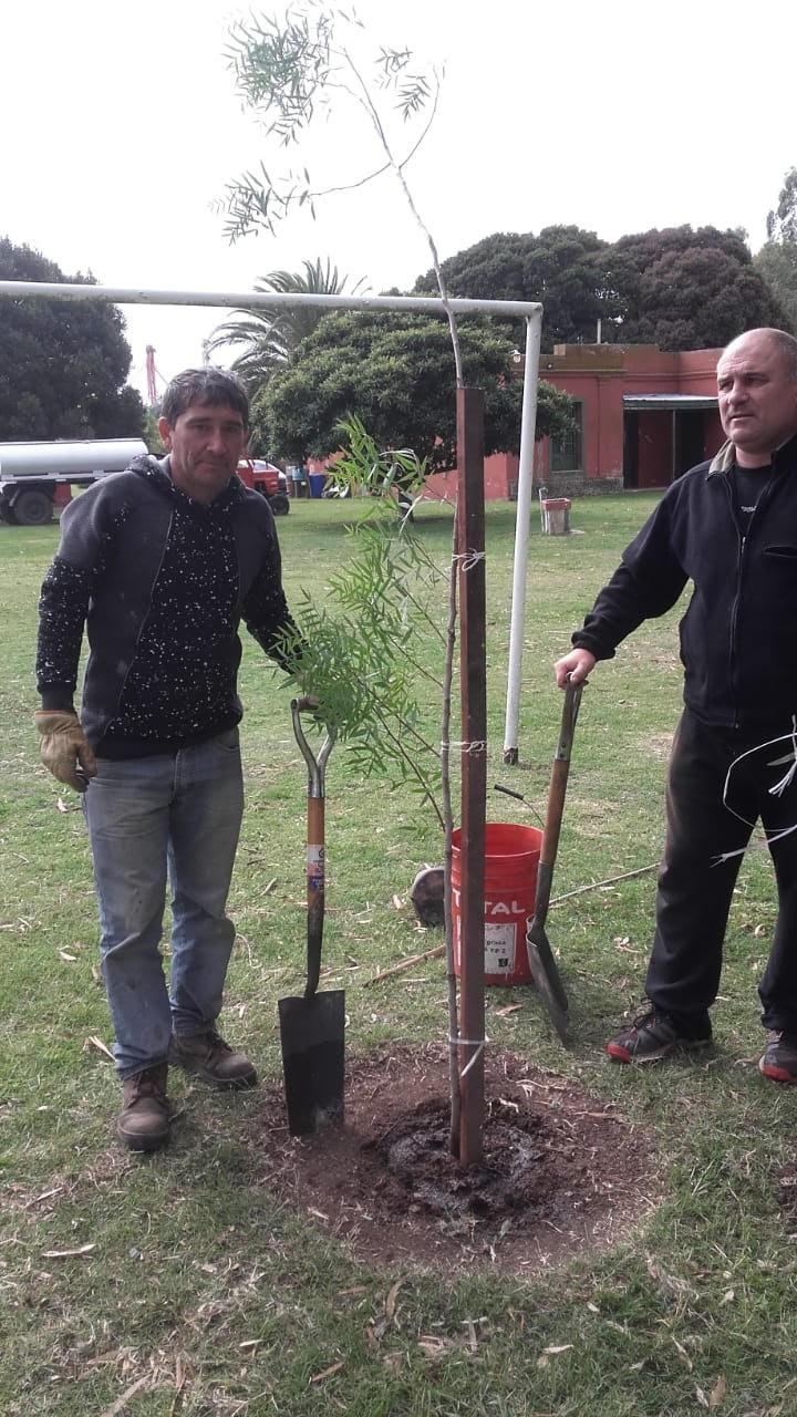 Se plantó el árbol de la memoria en la quinta Don Mateo