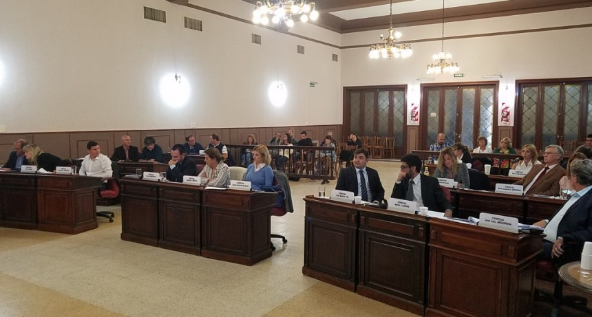 Estacionamiento Medido y Castraciones Masivas los temas más debatidos de la segunda sesión del Concejo