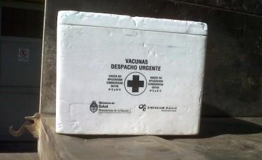 Vacunación Antigripal 2014: Más de 3000 dosis aplicadas a la fecha