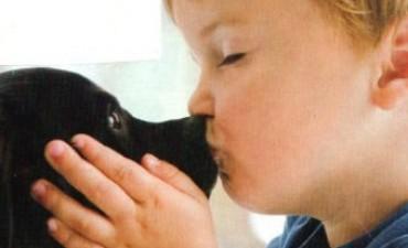 Prevención de hidatidosis: 'lo principal es no darle a los perros carne cruda ni achuras'