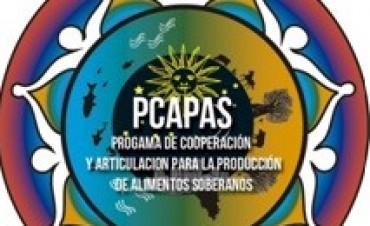 Presentación de proyecto sobre producción de alimentos soberanos