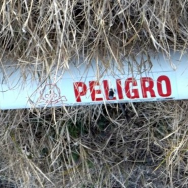 Trabajos de desratización en el arroyo Tapalqué