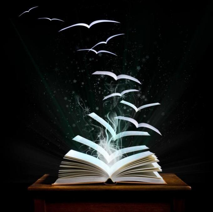 Bibliotecas proponen la Liberación de Libros