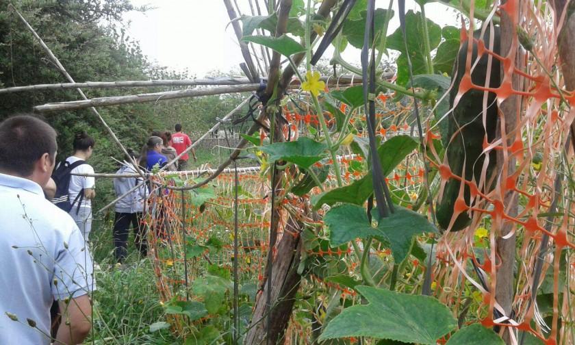 Segunda jornada del taller de Huerta Agroecológica