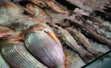 Sugerencias para consumidores de pescados y mariscos