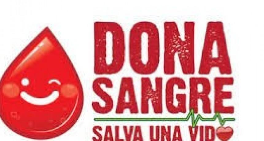La Municipalidad fletará este jueves 5 una combi para donantes de sangre