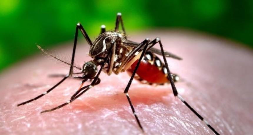 Nuevo bloqueo por sospecha de dengue