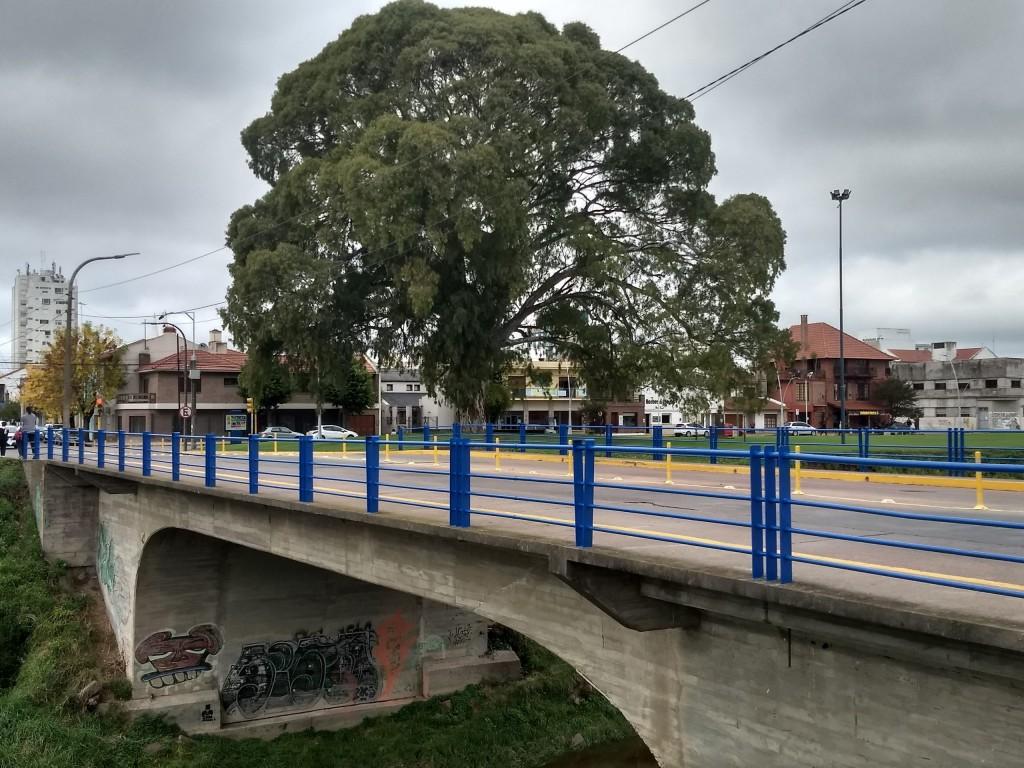 El Municipio continúa las tareas de mantenimiento de espacios verdes
