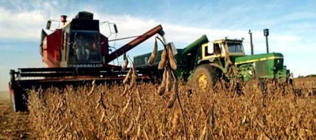 Con mucha humedad, se sigue cosechando soja en nuestra zona