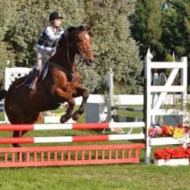 Equitación:Finaliza el Federal