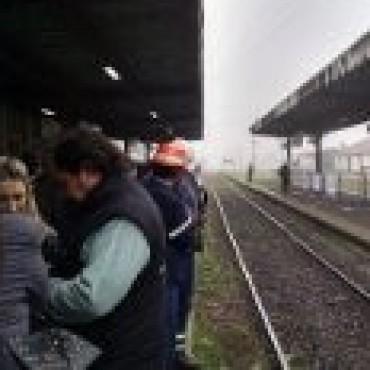 Tren: en la estación de Azul esperan su llegada