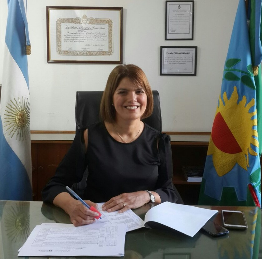 El Senado le dio media sanción al proyecto de Ley de Danza la Provincia de Buenos Aires