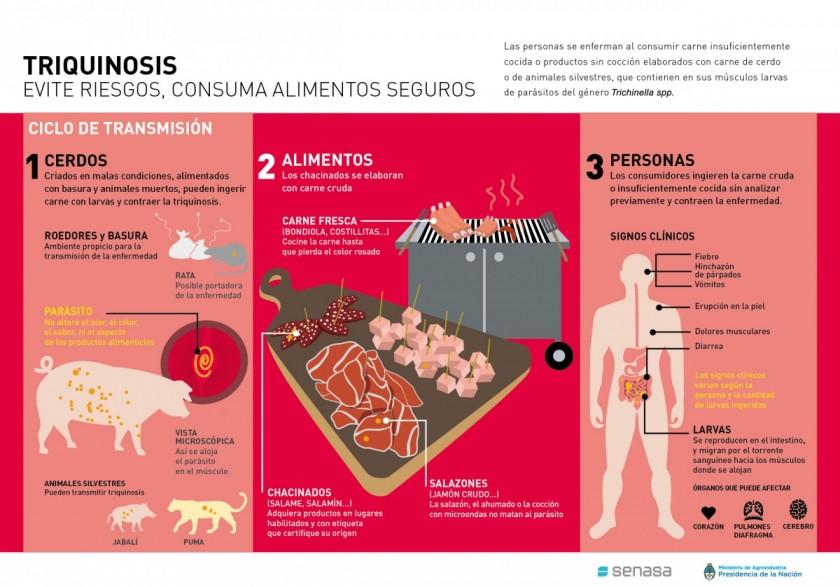 Triquinosis: recomendaciones para prevenir la enfermedad