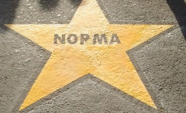 Estrella Amarilla N 123