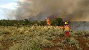 Bomberos recibieron la donación de un equipo para combatir incendios forestales
