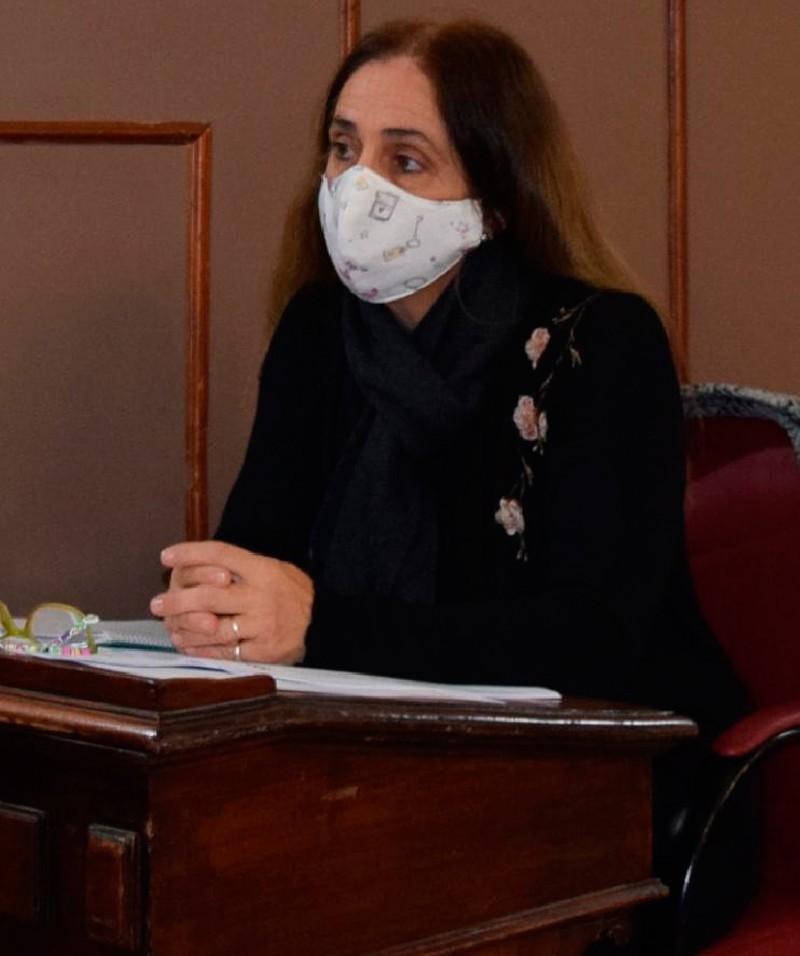 El Concejo aprobó un Pedido de Informes sobre el uso de las donaciones para enfrentar la pandemia