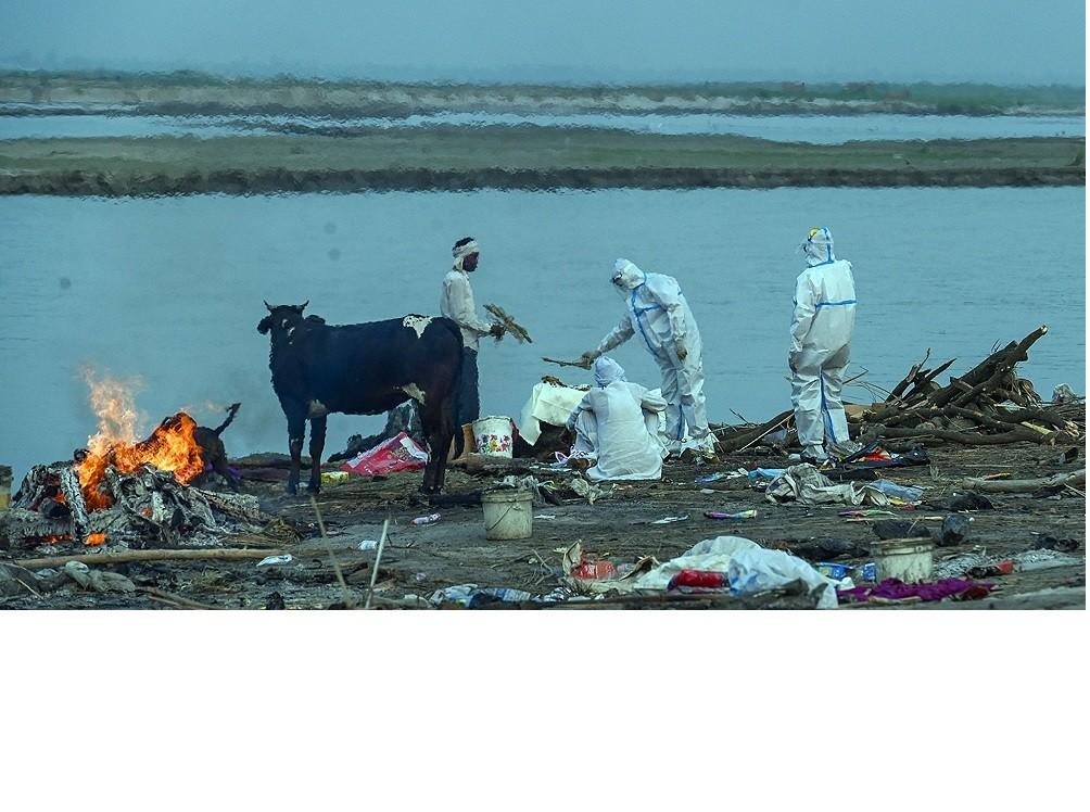India superó los 250.000 muertos por coronavirus y rescató cadáveres del Ganges