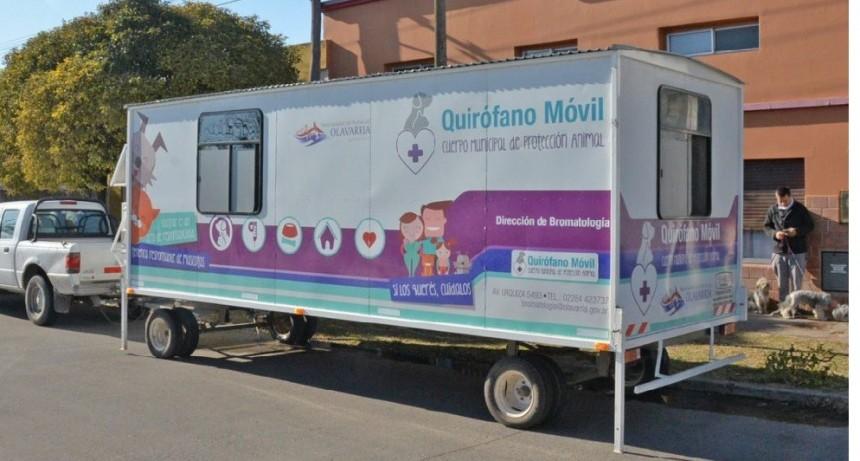 Quirófano Veterinario Móvil en barrio Lourdes