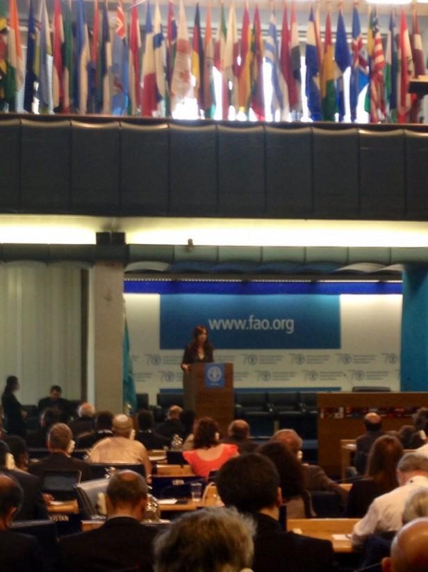 FAO: una olavarriense explica la distinción que obtuvo la Argentina
