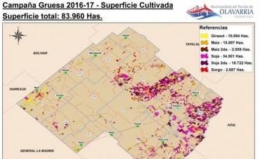 Campaña gruesa 2016/17: superficie de cultivos de verano en el partido de Olavarría